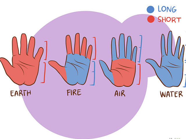 Which does your hand look most like?
