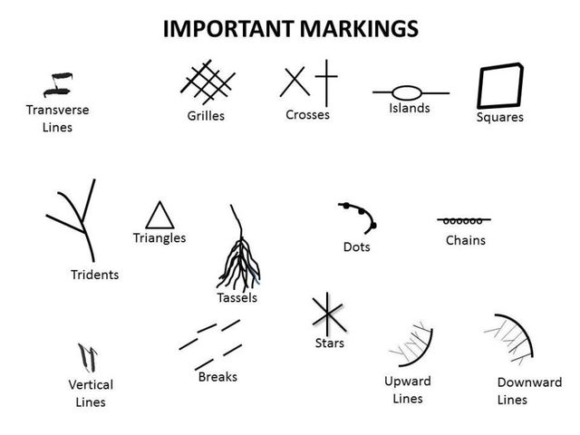 Now, let's look at your palm markings. Look at your palm closely. Have you any of these? If you have more than one, please select the one closest to your own description, and or whichever you have more of.