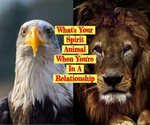 What is your Spirit Animal when you are in a Relationship?