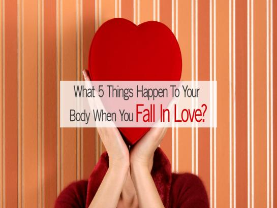 What 5 things happen to your Body when you fall in Love?